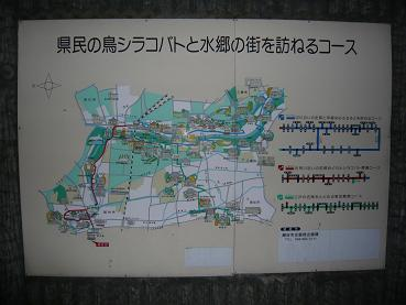 koshigaya5annai.JPG