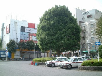 nishichiba02.JPG