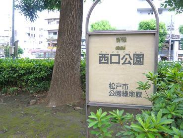 nishiguchi1.JPG