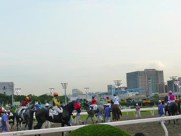 racemae1.JPG