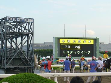 racemae2.JPG
