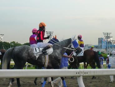 racemae3.JPG