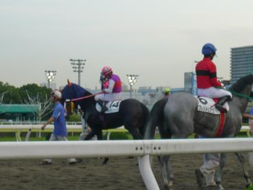 racemae4.JPG