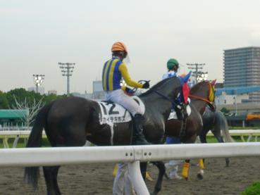 racemae5.JPG