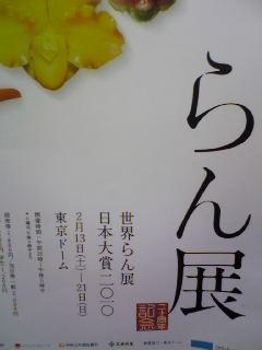 ran3.JPG