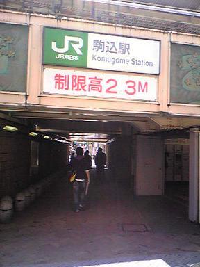 satsuki1.JPG