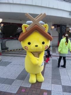shimanekko2.jpg