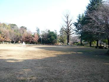 sugekari4.JPG