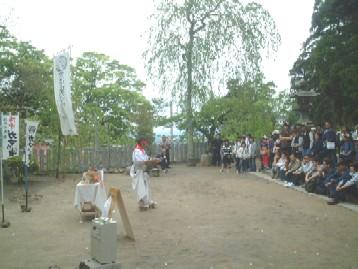 tsukubagama2.JPG