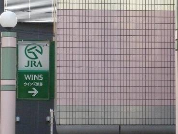 wins1.JPG