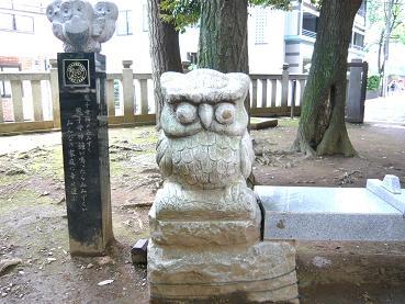 fukurou02.JPG