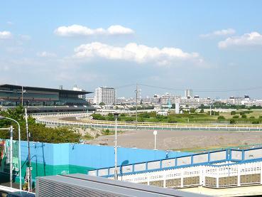 funabashikeiba2.JPG