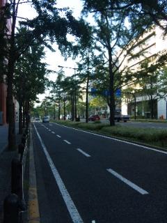midousuji2.jpg