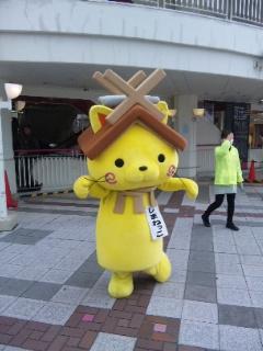 shimanekko1.jpg